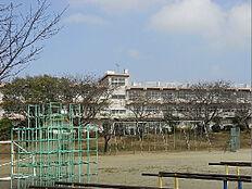土浦市立神立小学校(1706m)