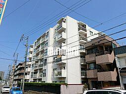 松栄レックスマンション[2階]の外観
