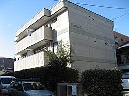 ポポラーレ21[2階]の外観