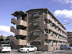 COSMO 439[1階]の外観