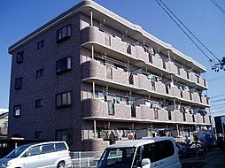 愛知県安城市城南町2丁目の賃貸マンションの外観