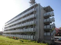 ビレッジハウス亀井野2号棟[5階]の外観