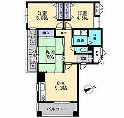 香川県高松市藤塚町3丁目の賃貸マンションの間取り