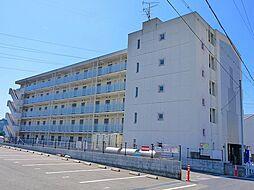 京都府木津川市木津奈良道の賃貸マンションの外観