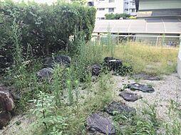 お庭付き。ガーデニングを楽しむのもいいですね