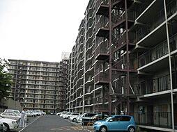 岸和田コーポラス3棟[1014号室]の外観