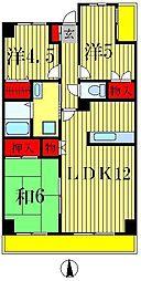 グランディス新八柱[11階]の間取り