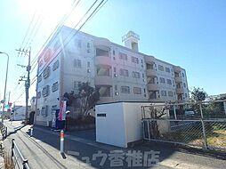 福岡県福岡市東区三苫3丁目の賃貸マンションの外観