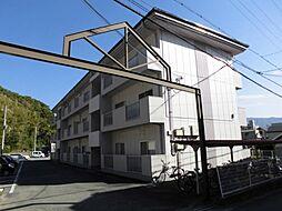 和歌山県海南市船尾の賃貸マンションの外観