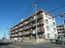 桜下マンション[206号室]の外観