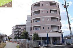 セレナ大和高田[5階]の外観