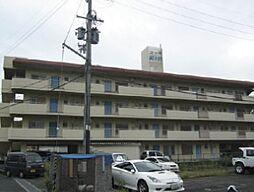 コーポ松乃井[4階]の外観