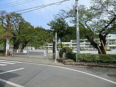 あきる野市立五日市小学校1(1200m)
