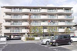 埼玉県草加市西町の賃貸マンションの外観