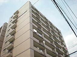 イトーピア紅葉舎金山マンション[4階]の外観