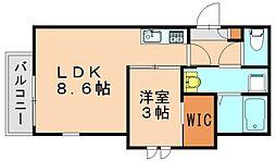 REGALEST箱崎宮前[2階]の間取り