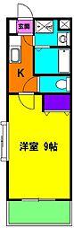 静岡県磐田市海老塚の賃貸マンションの間取り