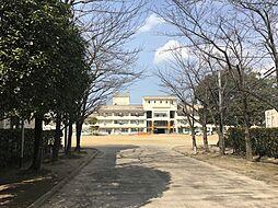 粕屋町立粕屋中央小学校(656m)