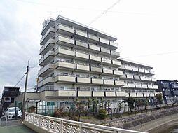 メゾンサイプリス[6階]の外観