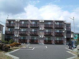 栃木県宇都宮市宝木本町の賃貸マンションの外観