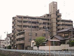 ライオンズガーデン川名本町[5階]の外観
