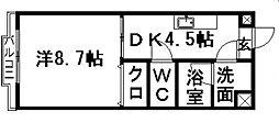 静岡県浜松市南区都盛町の賃貸マンションの間取り
