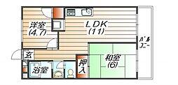 メゾン三田赤坂[601号室]の間取り