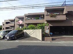 コスモ梶ヶ谷プレスティージュ[7階]の外観
