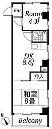 板橋カイセイ第3ビル[605号室]の間取り