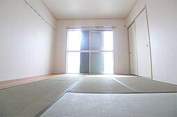 兵庫県加古川市平岡町一色西1丁目の賃貸アパートの間取り