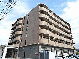 愛知県一宮市大和町妙興寺字中之町の賃貸マンションの外観