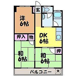 愛媛県松山市桑原1丁目の賃貸マンションの間取り
