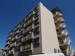 福岡県福岡市博多区板付4の賃貸マンションの外観