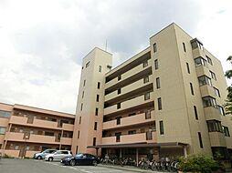 長野県松本市庄内1丁目の賃貸マンションの外観
