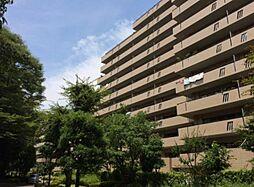 千葉県流山市加1丁目の賃貸マンションの外観