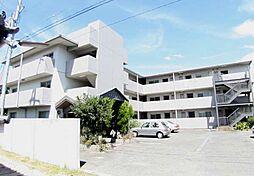 メゾン松ノ浜[106号室]の外観