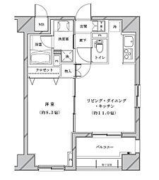 ライジングプレイス浅草参番館[3階]の間取り