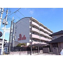 福島県郡山市開成3丁目の賃貸マンションの外観
