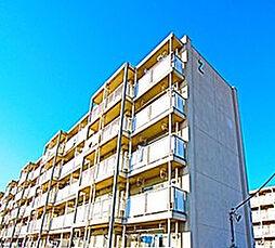 神奈川県平塚市下島の賃貸マンションの外観
