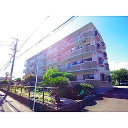 静岡県藤枝市高柳の賃貸マンションの外観