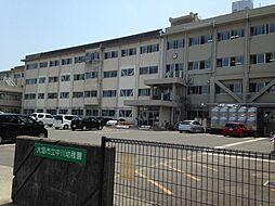 中川小学校 徒歩 約12分(約900m)