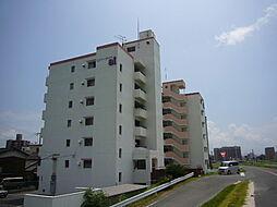 リバーサイドai[506号室]の外観