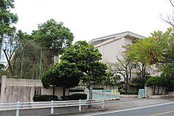 豊橋市立富士見小学校(361m)