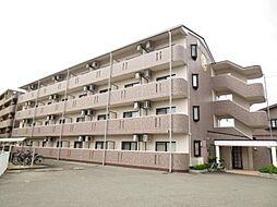 広島県東広島市西条下見7丁目の賃貸マンションの外観