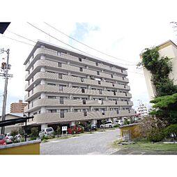 愛媛県新居浜市徳常町の賃貸マンションの外観