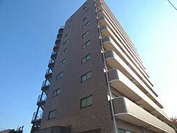 新田第11ビル[11階]の外観