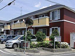 MAISON・M・USAMI[2階]の外観