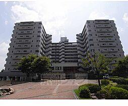 京都府京都市伏見区中島河原田町の賃貸マンションの外観