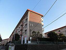 千葉県船橋市行田2丁目の賃貸マンションの外観