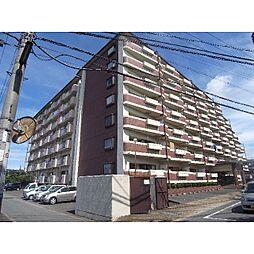 奈良県生駒郡安堵町東安堵の賃貸マンションの外観
